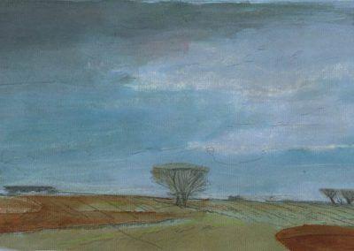 The Broads, Norfolk - walk 1 #01 - mixed media drawing