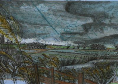 The Broads, Norfolk - walk 1 #25 - mixed media drawing