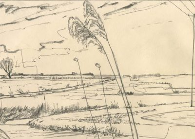 The Broads, Norfolk - walk 1 #41 - mixed media drawing