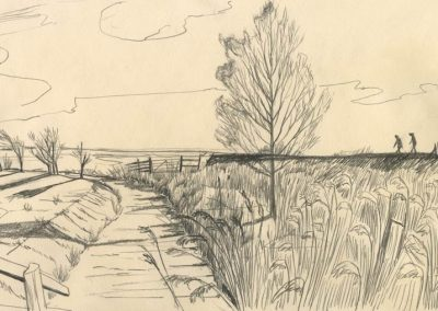 The Broads, Norfolk - walk 1 #46 - mixed media drawing