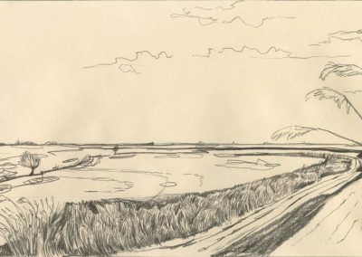 The Broads, Norfolk - walk 1 #49 - mixed media drawing