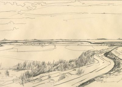 The Broads, Norfolk - walk 1 #50 - mixed media drawing