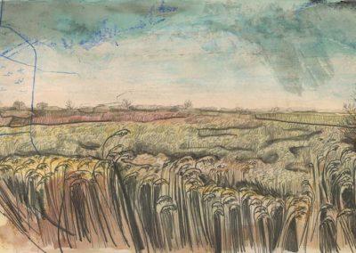 The Broads, Norfolk - walk 2 #20 - mixed media drawing