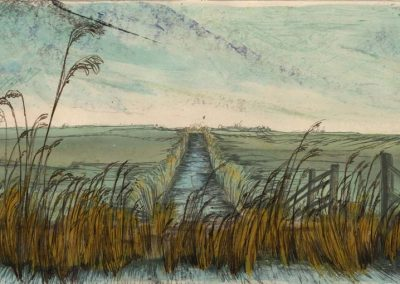 The Broads, Norfolk - walk 2 #23 - mixed media drawing