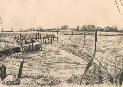 The Broads, Norfolk - walk 2 #66 - mixed media drawing