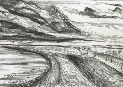 The Broads, Norfolk - walk 3 #11 - mixed media drawing