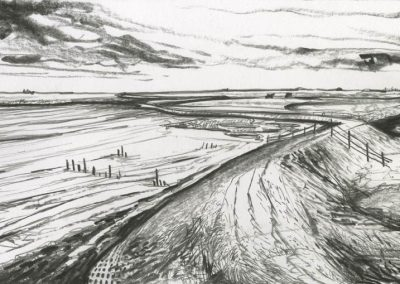 The Broads, Norfolk - walk 3 #15 - mixed media drawing