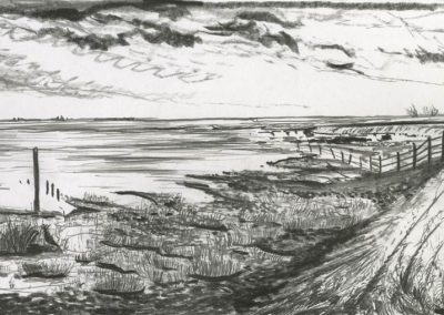 The Broads, Norfolk - walk 3 #16 - mixed media drawing