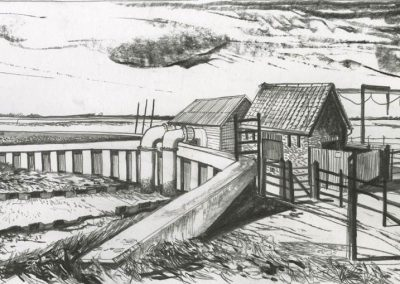The Broads, Norfolk - walk 3 #34 - mixed media drawing
