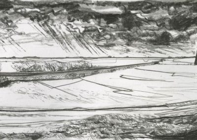 The Broads, Norfolk - walk 3 #37 - mixed media drawing