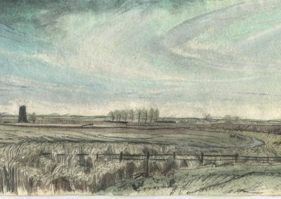The Broads, Norfolk - walk 5 #24 - mixed media drawing