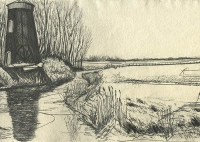 The Broads, Norfolk - walk 5 #42 - mixed media drawing